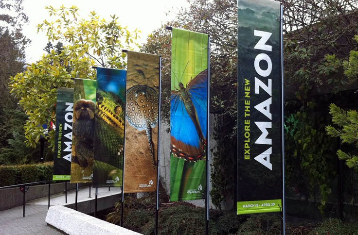 banner_printing_london_double 1