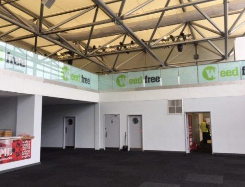 Battersea Exhibition Hall Transformation